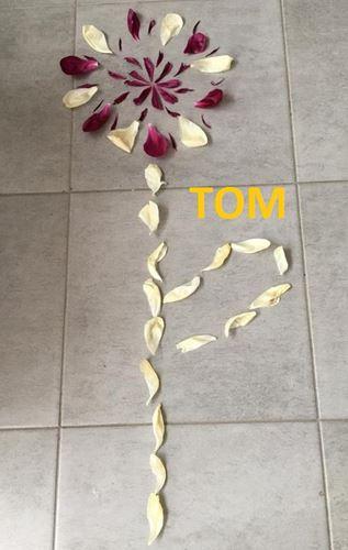 copie-0_tom-fleur